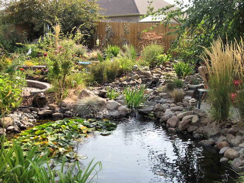 Pond and Garden Tour 2011
