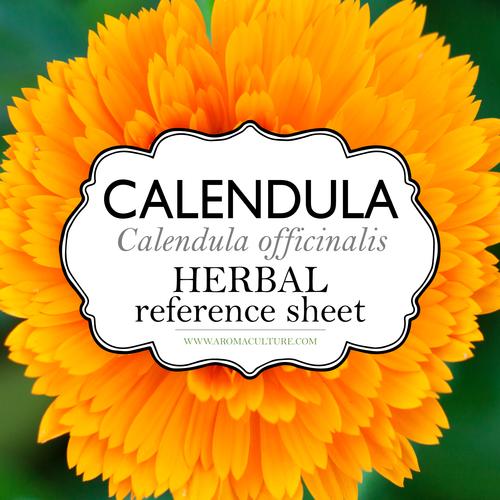 calendula herbal reference sheet printable aroma culture