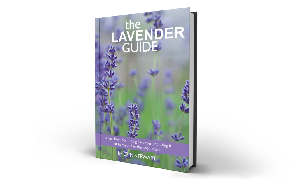 The Lavender Guide by Erin Stewart Cover.png