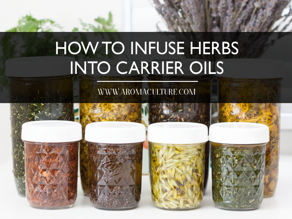 how-to-infuse-herbs-into-carrier-oils.png