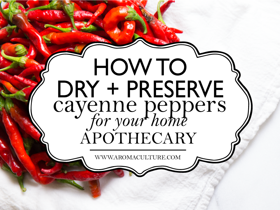 HOW-TO-DRY-CAYENNE-PEPPERS.png