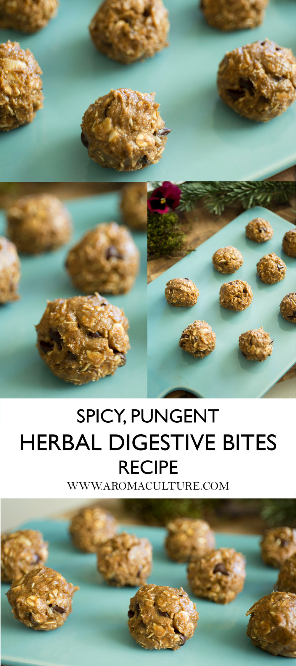HOW TO MAKE HERBAL DIGESTIVE BITES.jpg