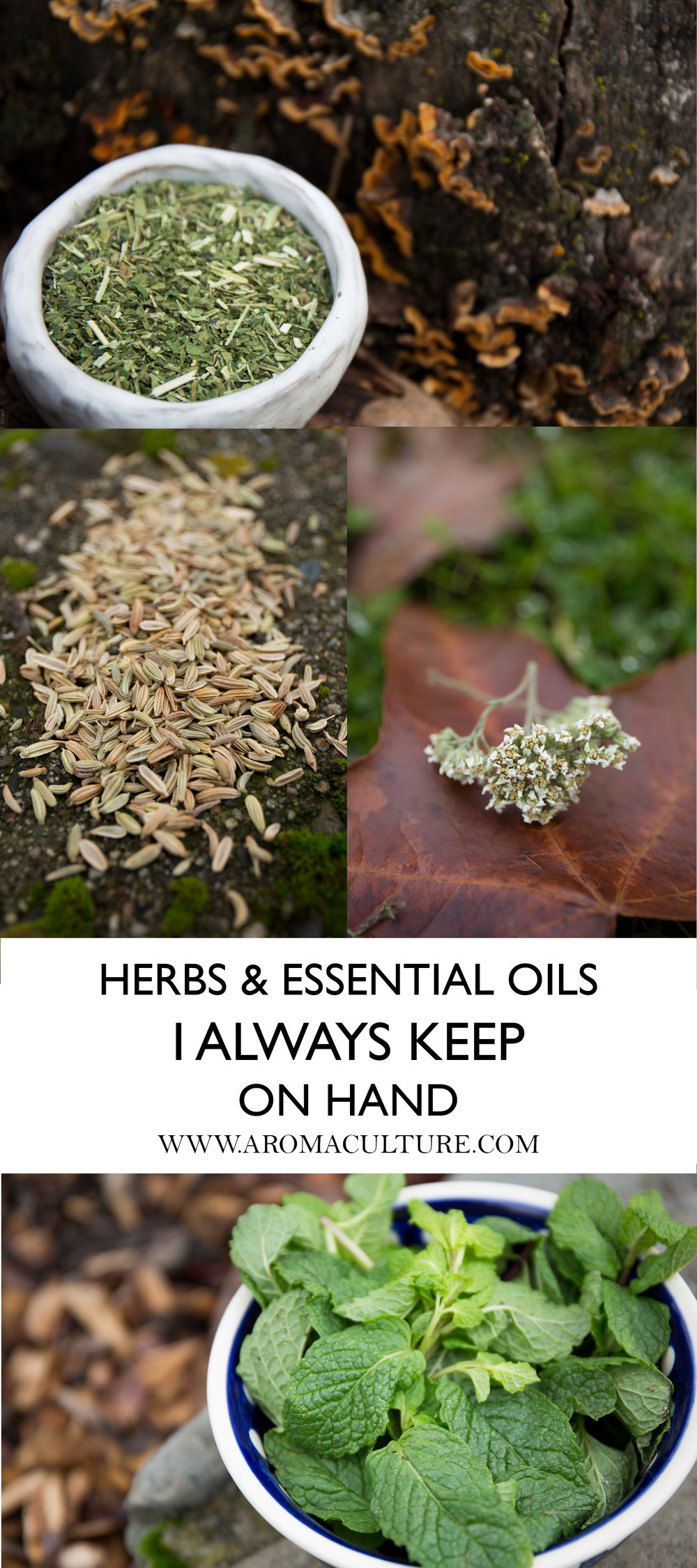 HERBS AND ESSENTIAL OILS I ALWAYS KEEP ON HAND.jpg