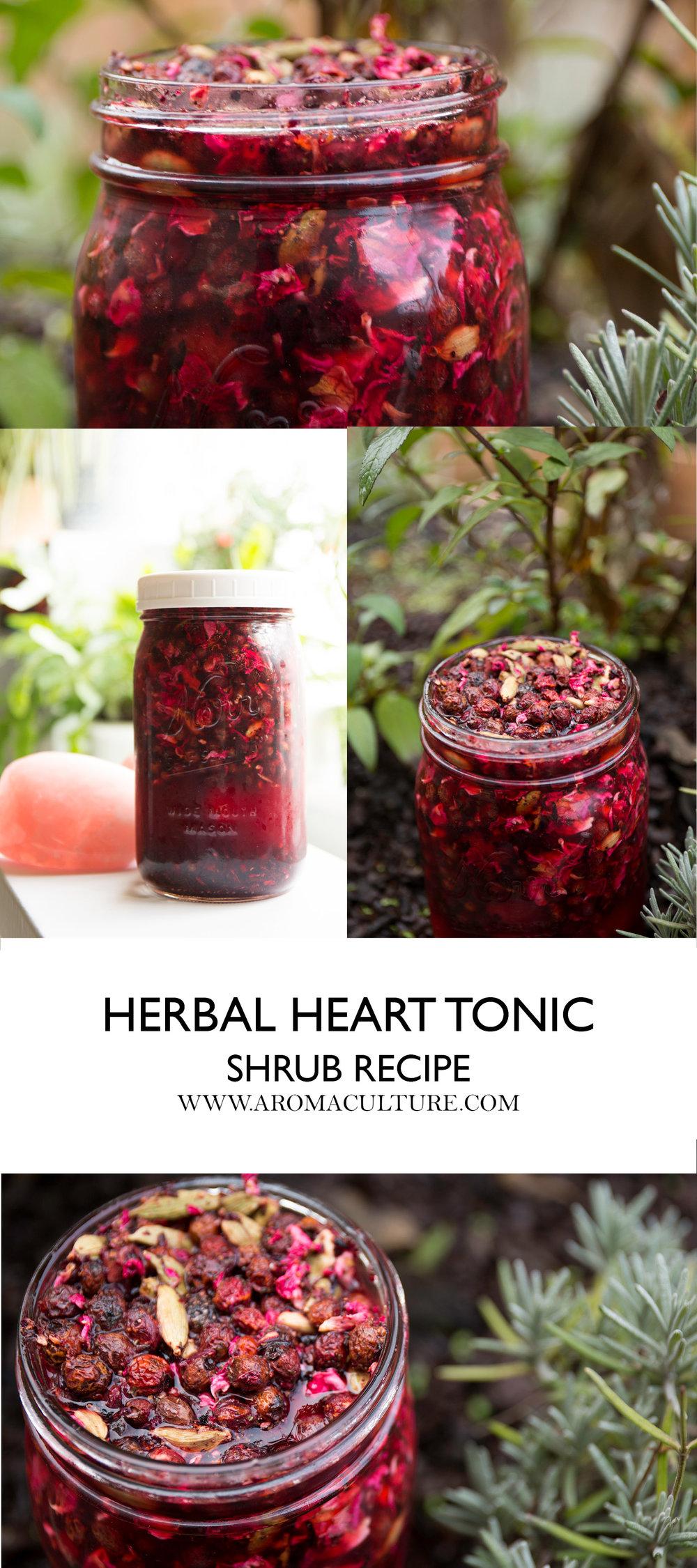Herbal Heart Tonic Shrub Recipe – Floranella
