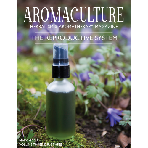 Gifts — Old Blog — Aroma Culture