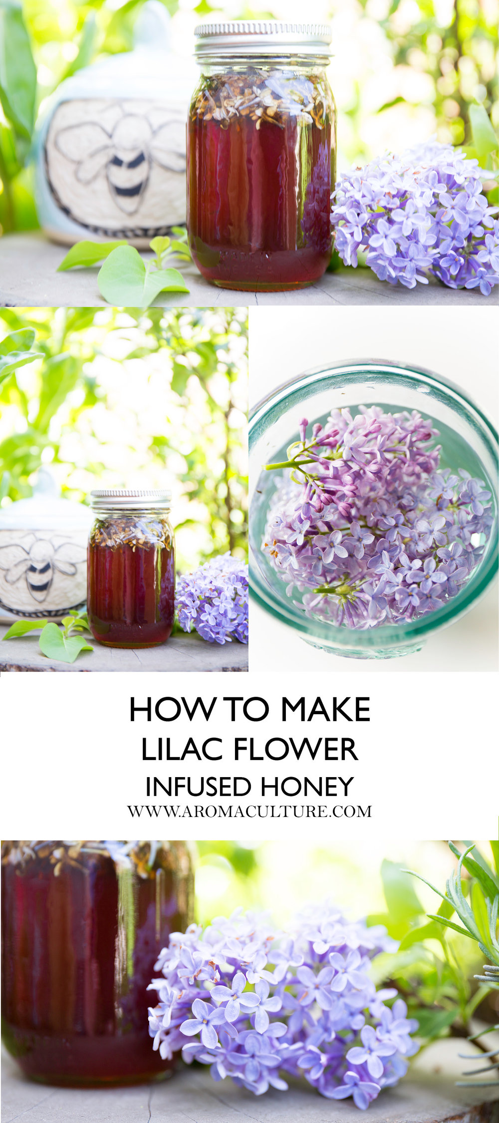 how to make lilac flower infused honey aromaculture.jpg