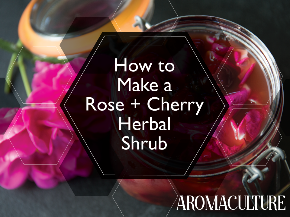 how-to-make-a-rose-and-cherry-herbal-shrub-by-aromaculture.png