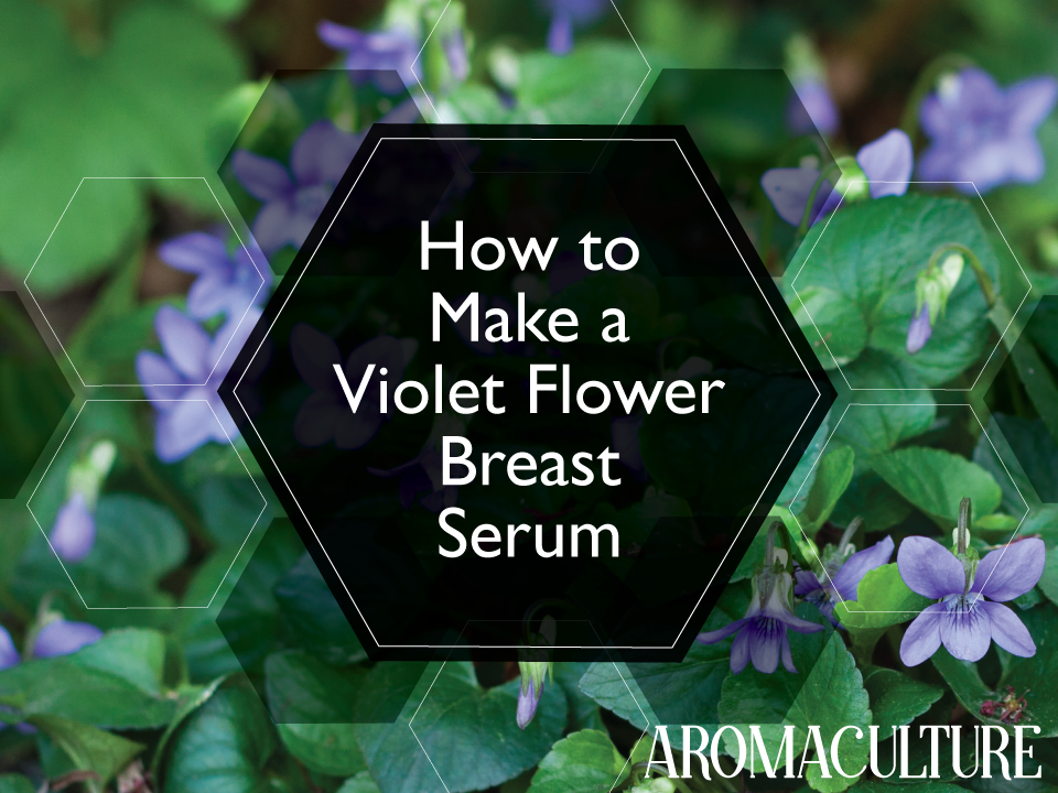 how-to-make-violet-flower-breast-serum.png