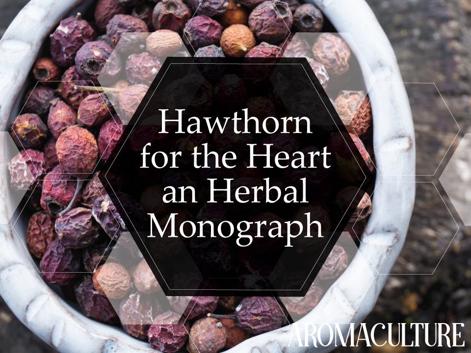 hawthorn-monograph-aromaculture.png