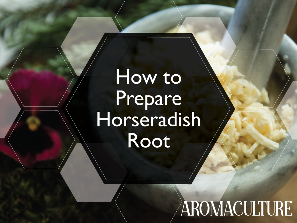 HOW-TO-PREPARE-HORSERADISH.png