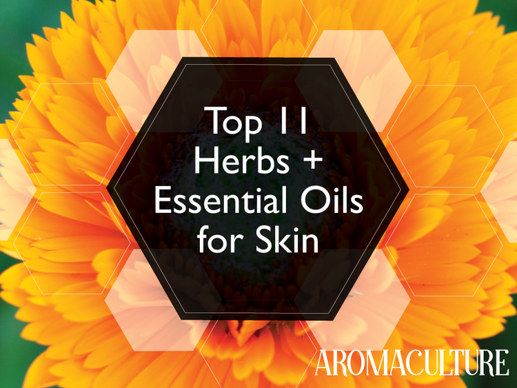 Top 11 Herbs And Essential Oils For The Skin Aroma Culture