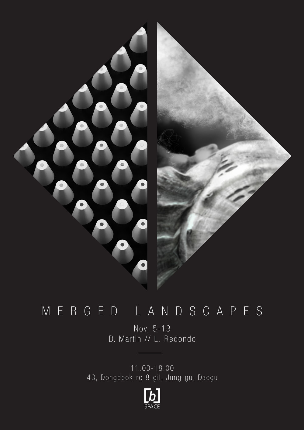 MERGED LANDSCAPES - DAVID Martin // LUCAS RedondoDuo exhibition, November 5 to 13, 2018, at [b]SPACE, Daegu.(opening reception party, Nov.5, 6 pm.)