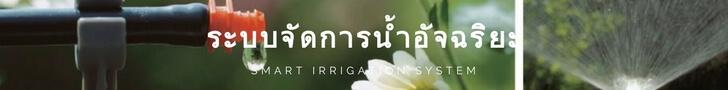 Smart Home Automation system - ระบบจัดการน้ำอัจฉริยะ - smart irragation system Smart home คือ Smart Home บ้านอัจฉริยะ pantip สัญญาณกันขโมยบ้าน  Wulian Thailand สมาร์ทโฮม