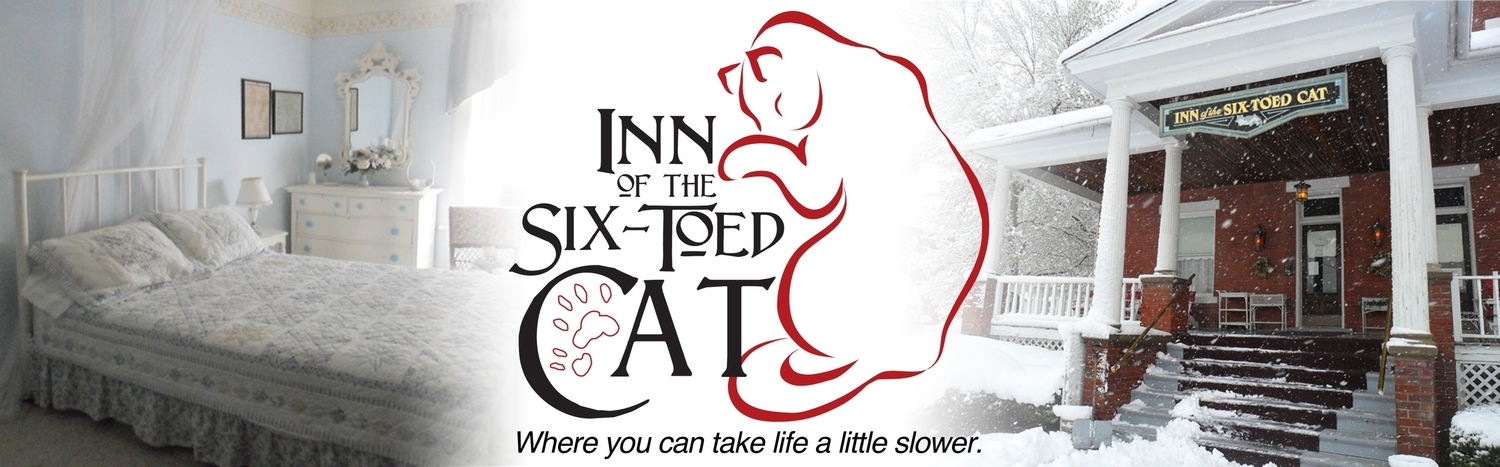 Inn of the Six-Toed Cat