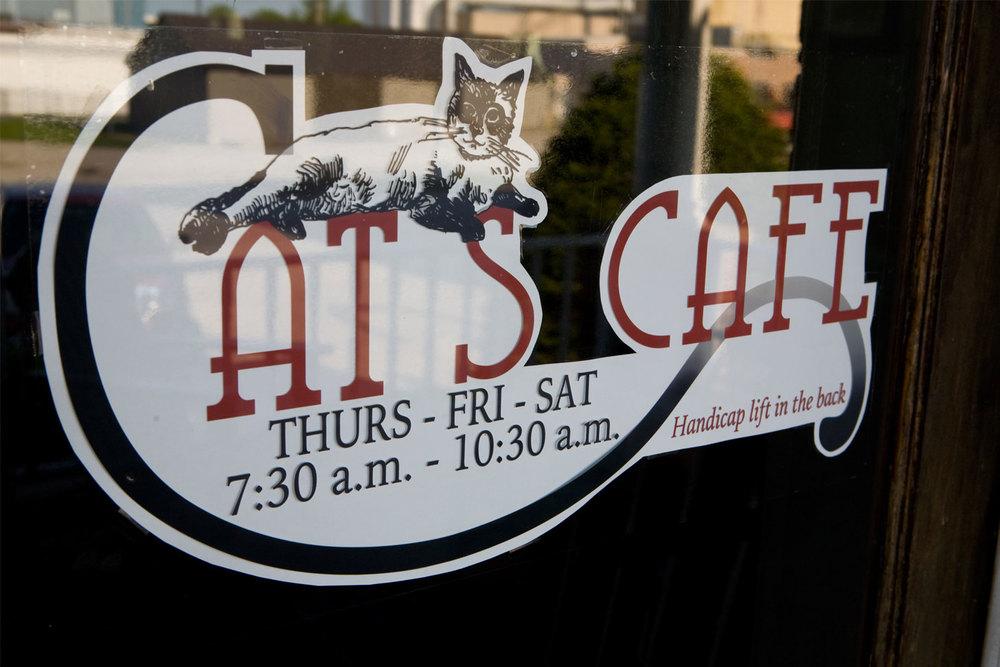 CatsCafe.jpg