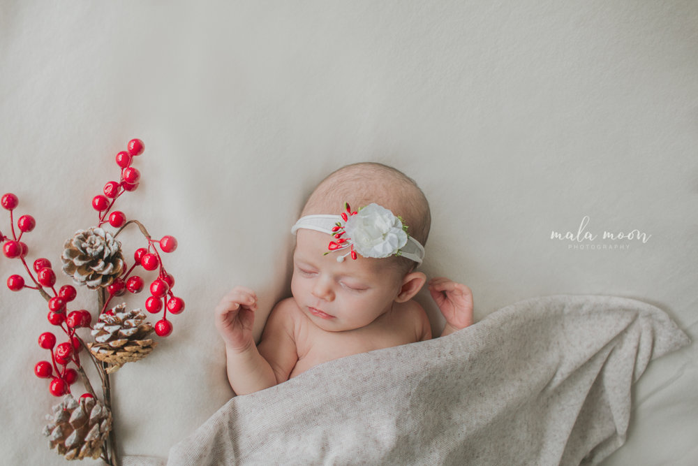 christmas-themed-baby-portrait