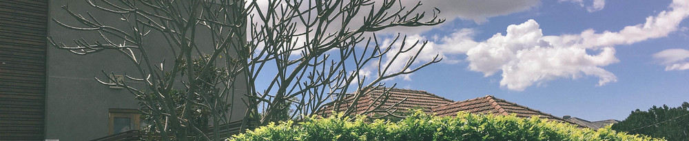 Property laws in Queensland have recently undergone a dramatic change, with the repeal of PAMDA, which has changed the conveyancing process for buyers and sellers.