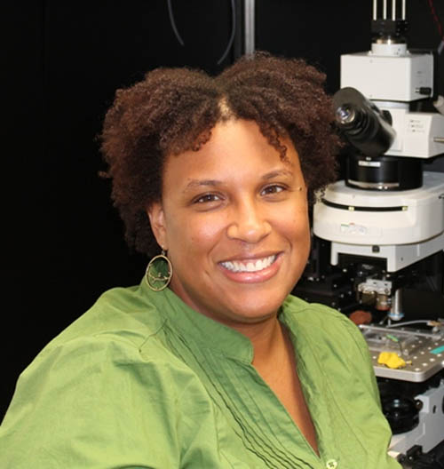 Past Postdoctoral Councillor of the Arizona Physiological Society Johnnie Moore-Dotson, PhD