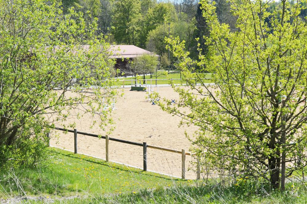 Springplatz Gut Kerschlach