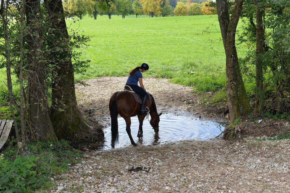 Unser neuer Wassergraben