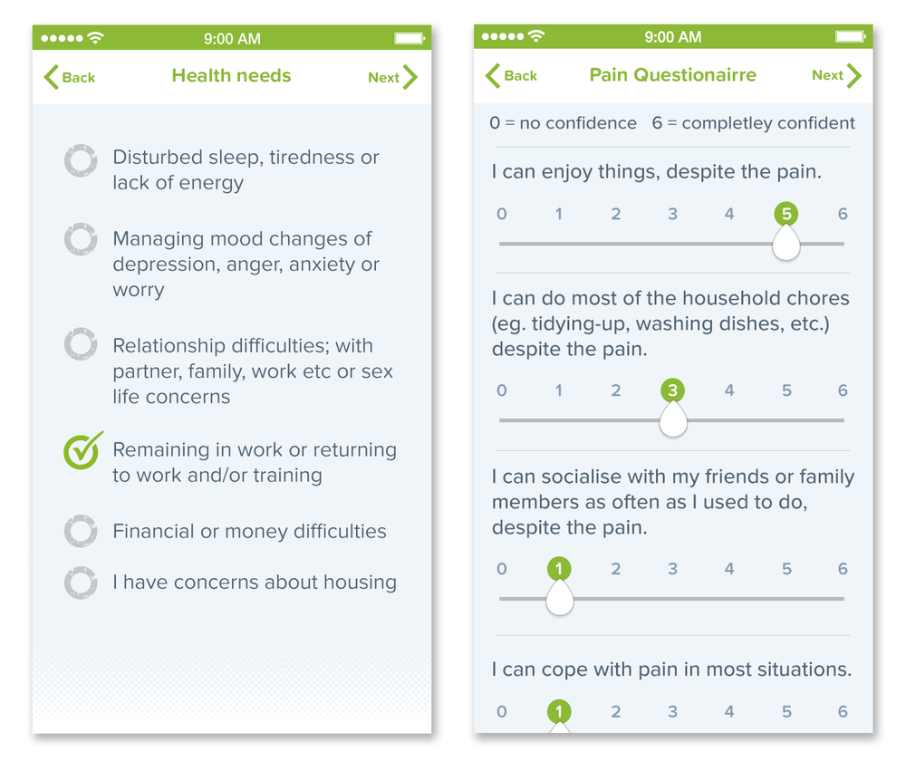 Health Needs -  a questionnaire that identifies the key issues that need to be addressed  Pain Questionaire - monitors a patients confidence to cope with aspects of daily living