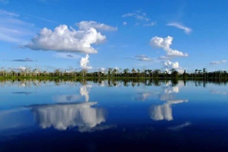Pacaya Samiria National Reserve.jpg