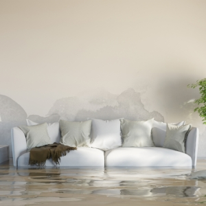 Flood Damage Cleaning - You can't predict the future. When flooding strikes we clean up