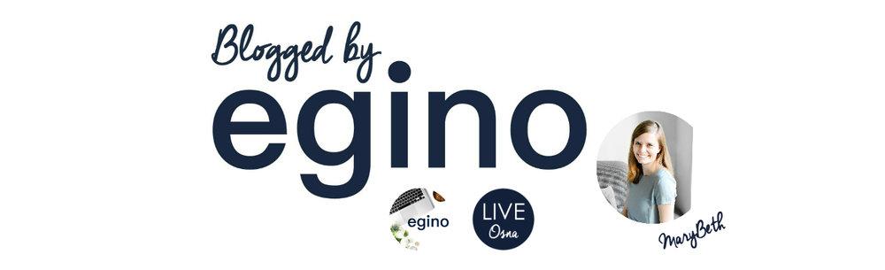 Blogged by Egino Intro Page.jpg