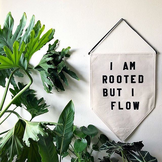•• You are rooted but you flow••