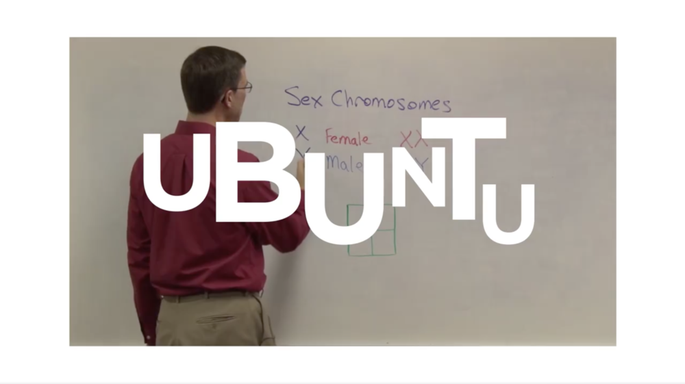 Ubuntu 13: what the water feels like to the fishes
