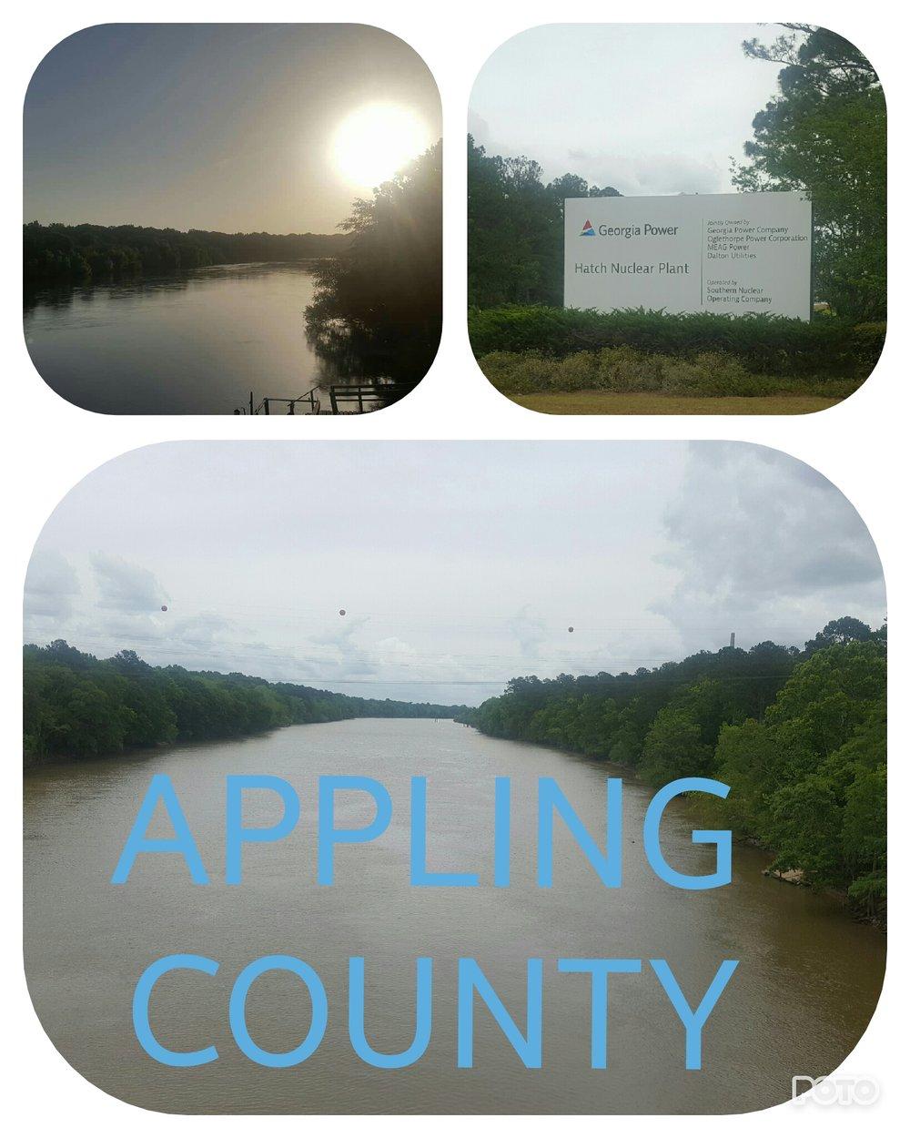 Copy of APPLING COUNTY.jpg