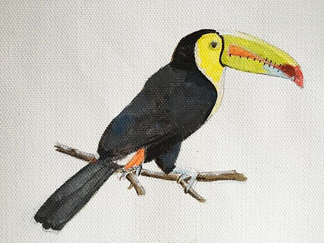 In symbolism, the toucan encourages us to reveal our true self, to dare to be different and to add more colour to our life. This hand-painted toucan is one among hundreds of drawings on our world map! #theyellowtoucan #toucan