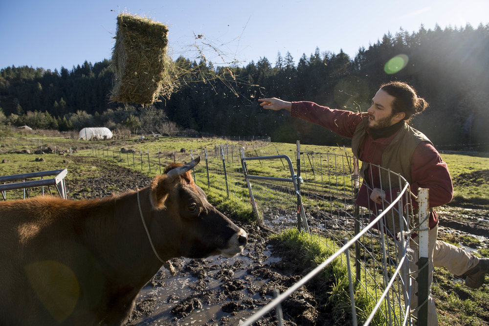Jacob on his family farm in Roseburg, Oregon. Photo: Robin Loznak