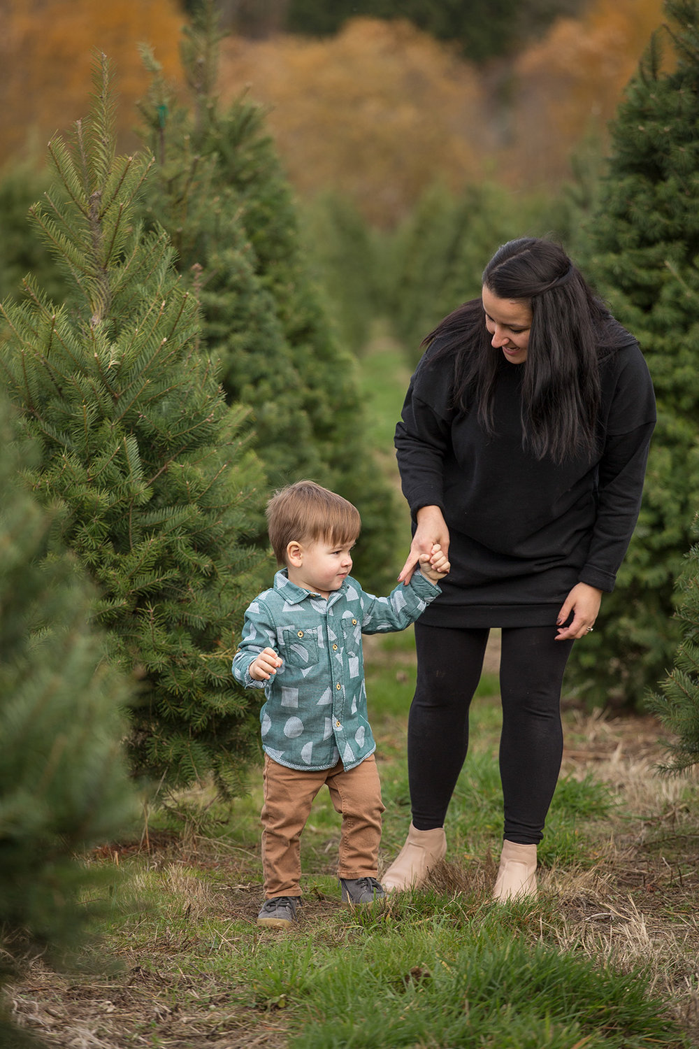 Tree Farm Family Christmas Photos Seattle