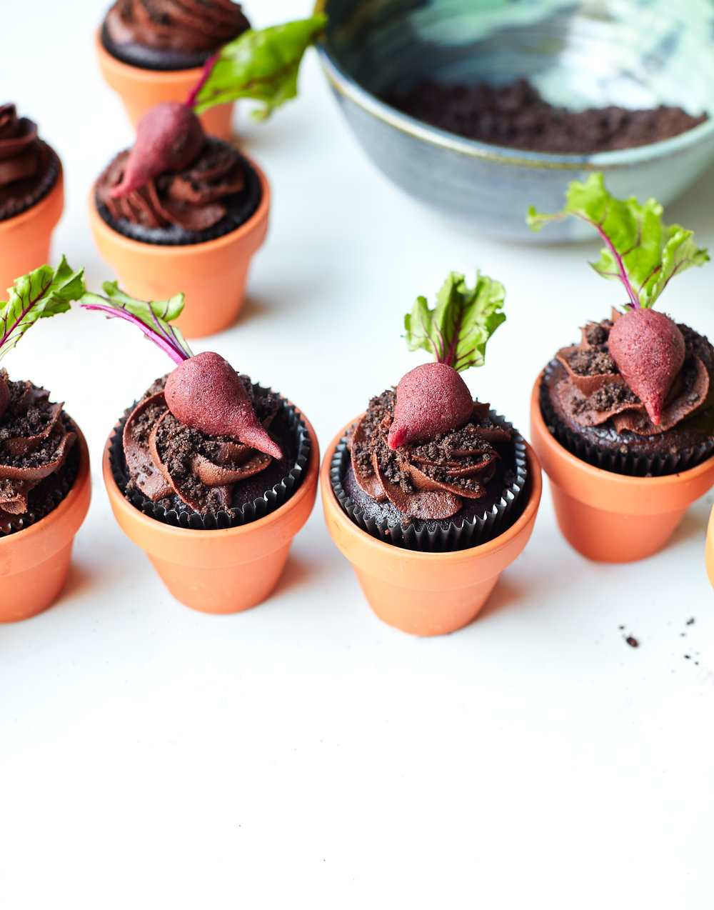 EARTH DAY - BEETS AND DIRT CUPCAKES - II