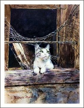 Cat in the window, water-colour by Francis Marte