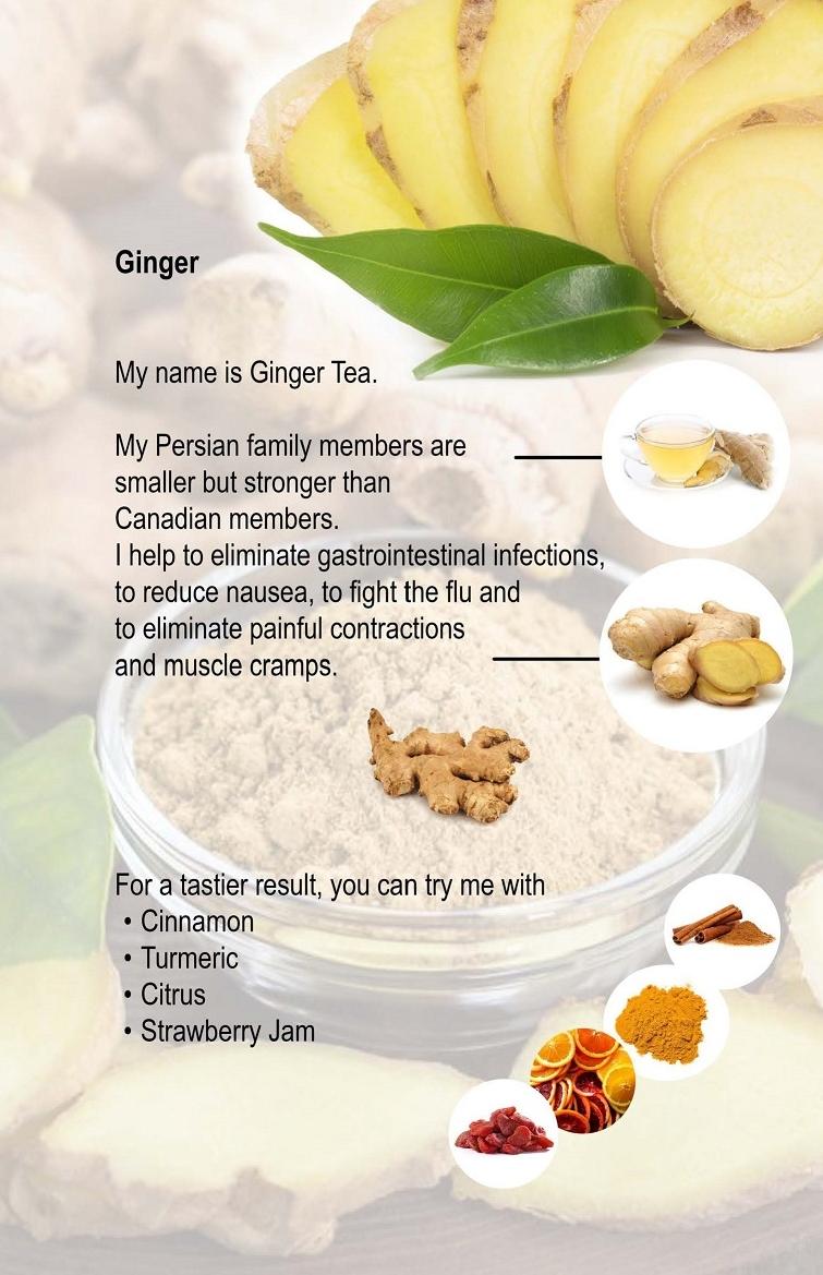 04. Ginger.jpg