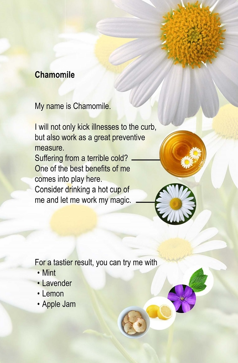 03. Chamomile.jpg