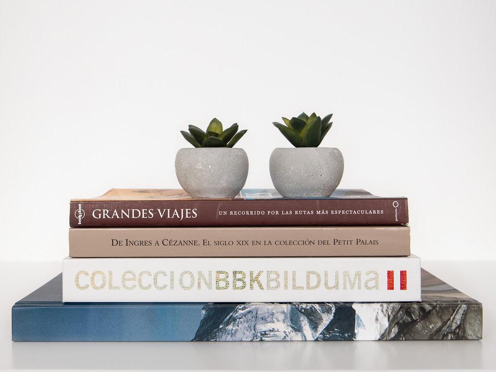 Libros sobre la mesa del slón