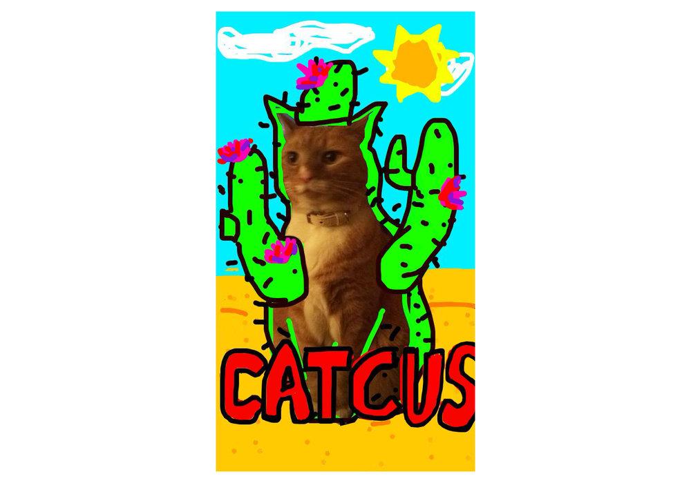 Catcus (Edit).jpg