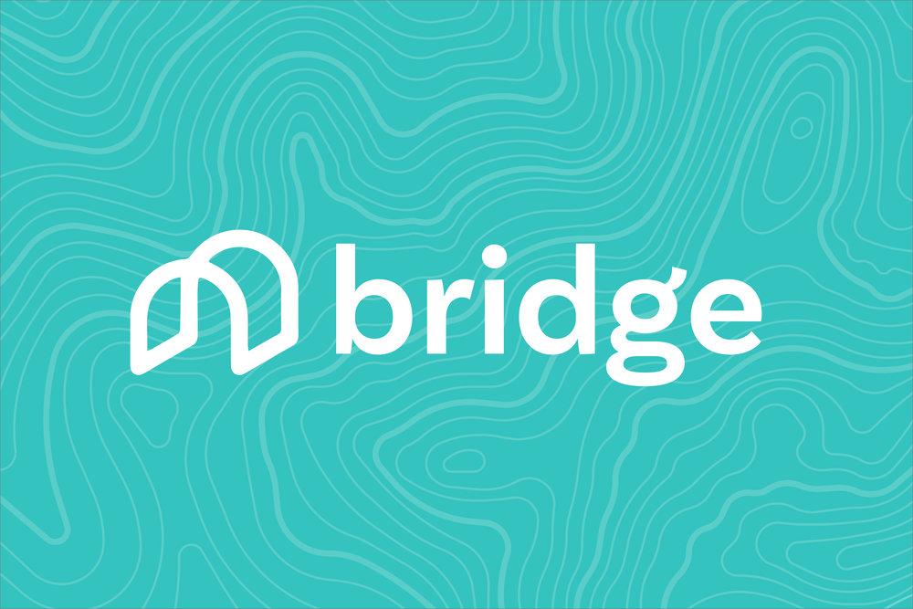 Shelby_Alexander-Bridge_logo.jpg