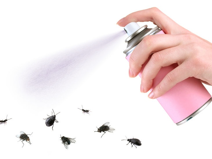 In case you didn't get the picture imagine the can is spraying essential oils and it kills bugs…