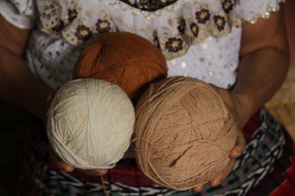 Proc 3 types of cotton.jpg