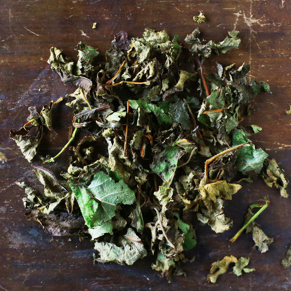 Fermented Apple Leaves concentrated with deep apple flavor and aroma