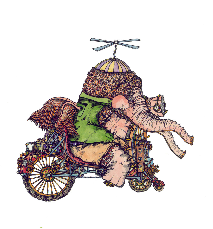 elephant cycle, c.b.r. 2015