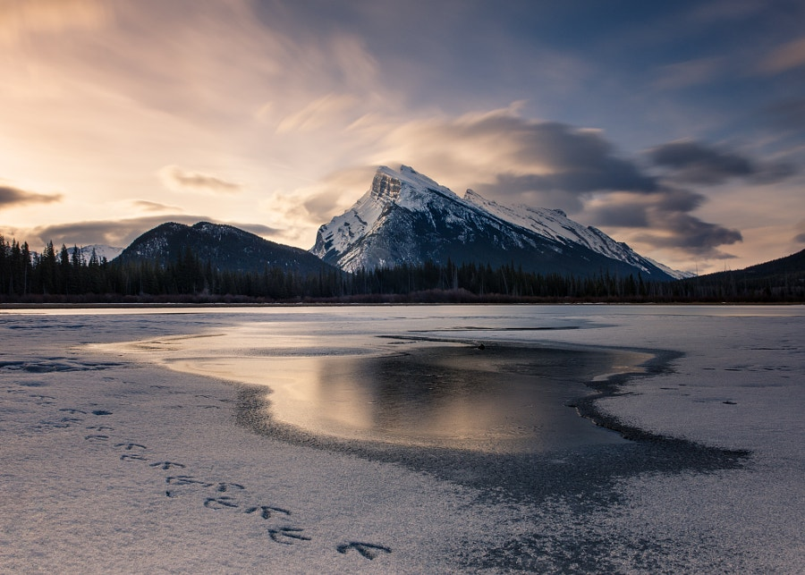 Mount Rundle sunrise