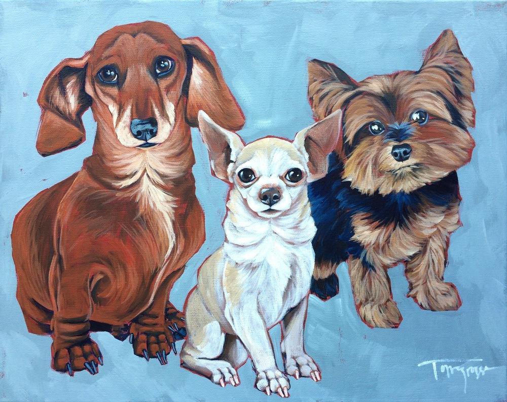 "Dachshund, Chihuahua, & Yorkie - 16""x20"""