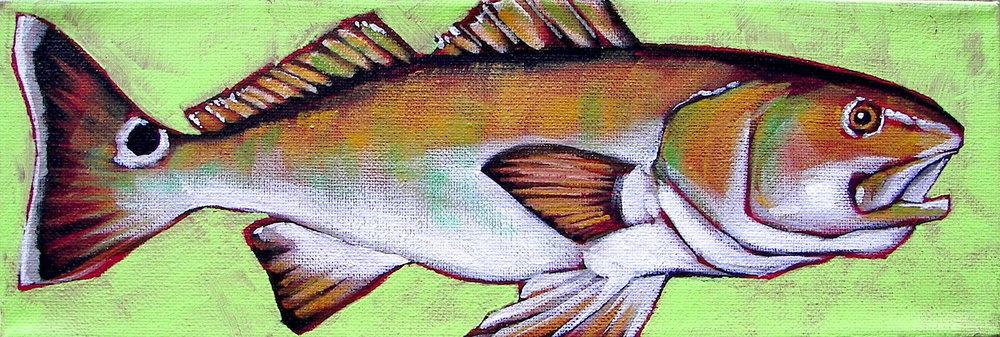 Mini-Redfish.jpeg