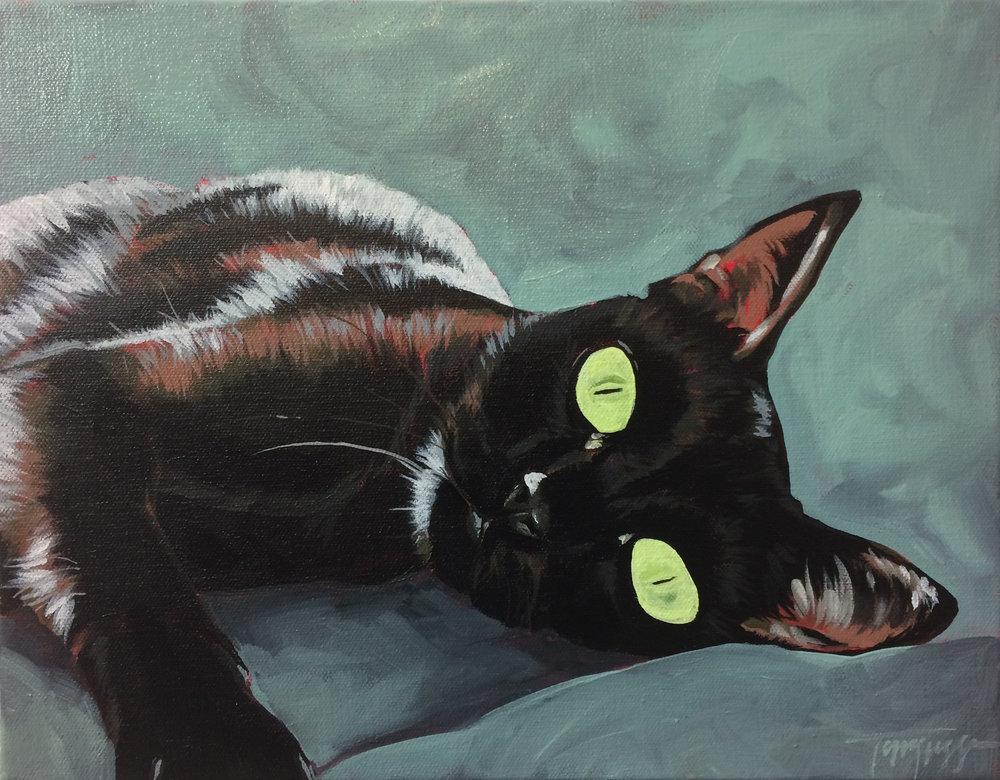 cat1_11x14.JPG