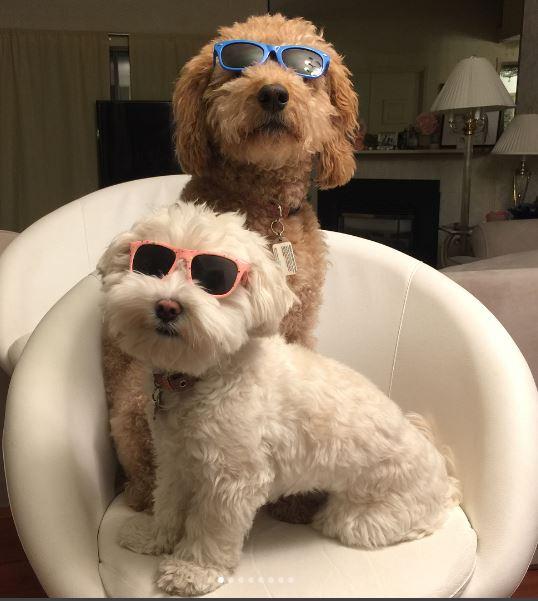 bro and sis small pinks and blue.JPG